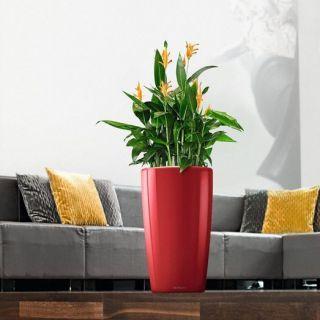 Vaso fioriera alta RONDO Ø32 con auto irrigazione - LECHUZA