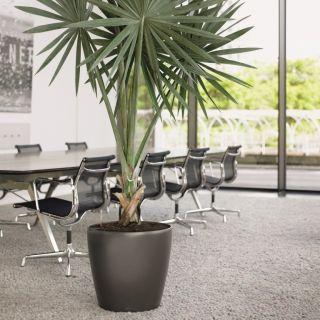 Vaso per piante CLASSICO PREMIUM LS Ø43 H40 con auto irrigazione - LECHUZA