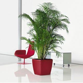 Vaso per piante QUADRO PREMIUM LS 43x43 H40 con auto irrigazione - LECHUZA