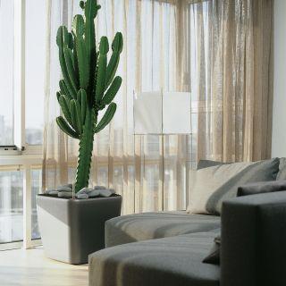 Vaso per piante  QUADRO PREMIUM 50x50 H47 LS con auto irrigazione - LECHUZA