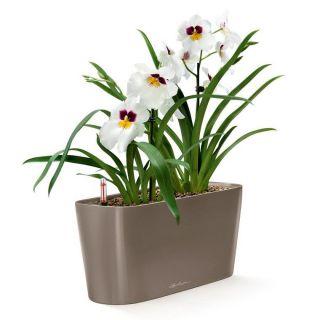 Vaso da tavolo DELTA 20 con auto irrigazione 40x15 H18 - LECHUZA