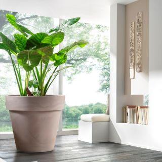 Vaso fioriera in resina STANDARD ONE Ø120 - TERAPLAST