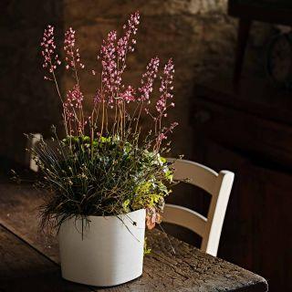 Vaso da tavolo CAPRI 19X19 H17 con riserva d'acqua - TERA