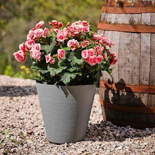 Vaso da tavolo HOOP Ø25 H23,5 con riserva d'acqua - TERAPLAST