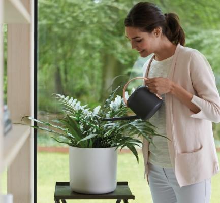 Prendersi cura delle piante è ora meno faticoso e più facile!