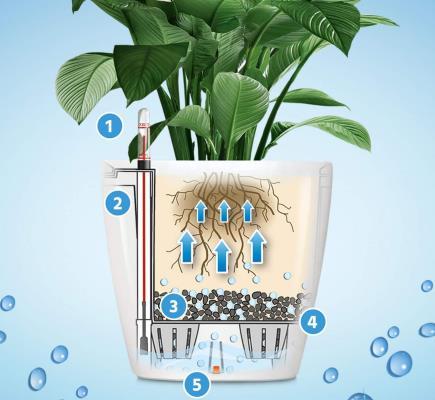 Vasi con Auto Irrigazione: curano le piante quando non ci sei!