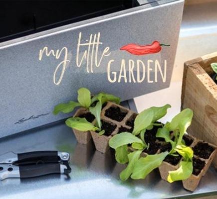 Orto urbano: l'orto facile sul tuo balcone