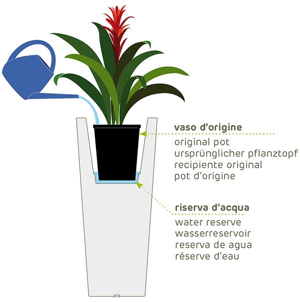 Utilizzo del vaso all'interno