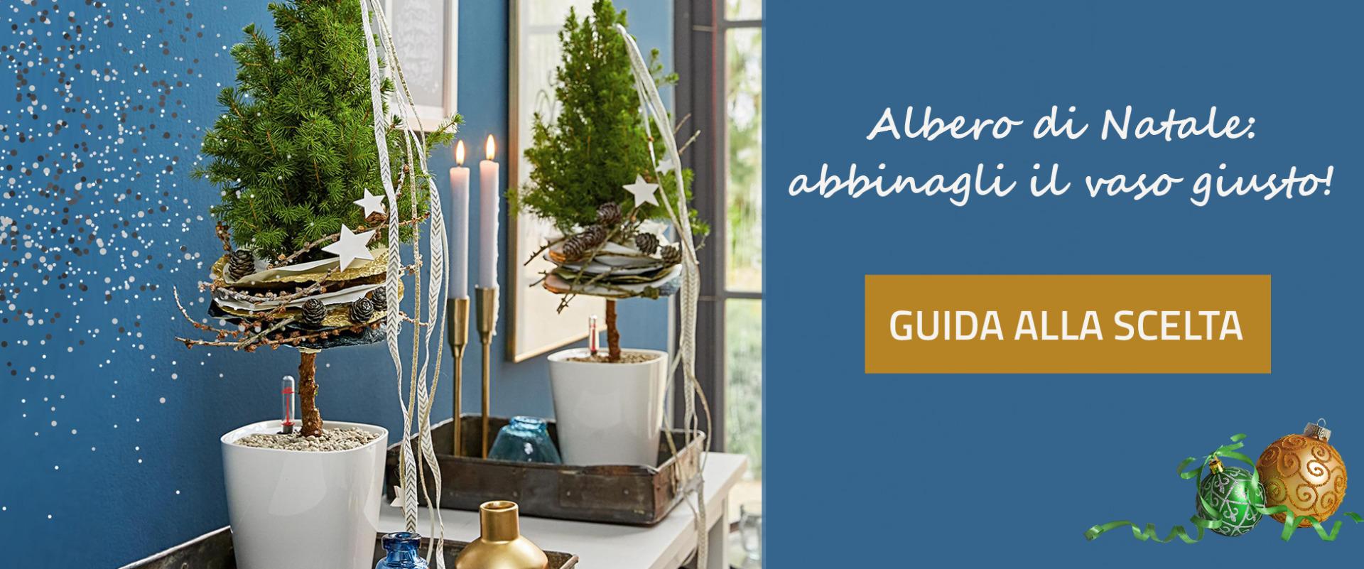 Scegli il Vaso per il tuo Albero di Natale