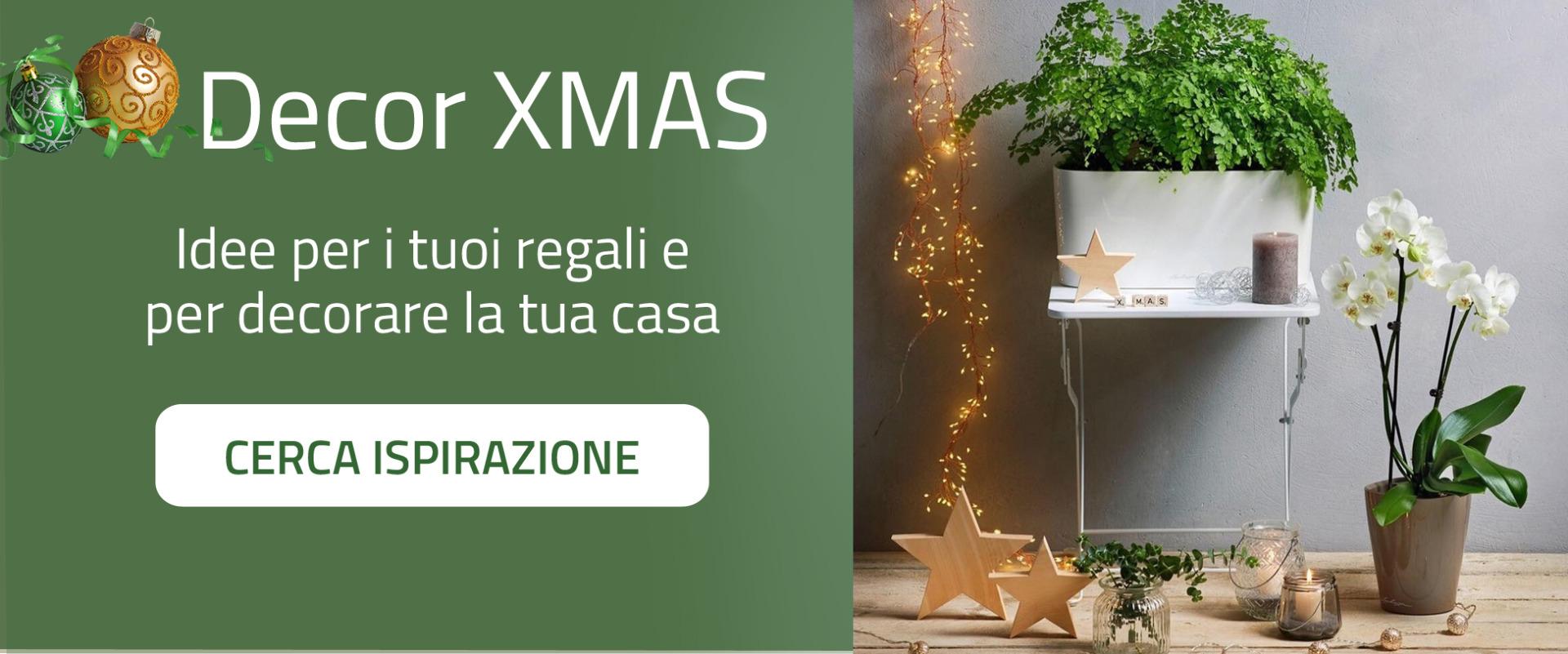 Idee per i tuoi regali e per decorare la casa per il Natale