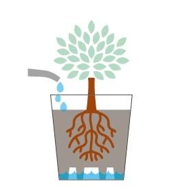 Riserva d'acqua vasi Teraplast RE-POT